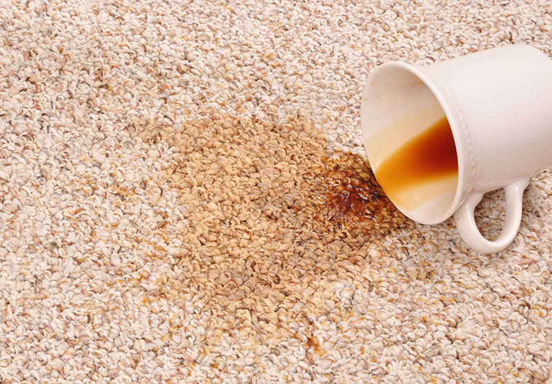 Carpet Cleaning: Coffee Stain